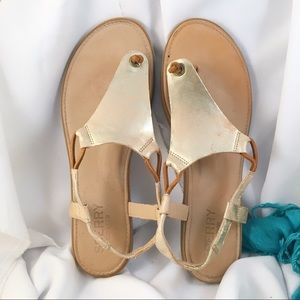 599e9cda25e6 Sperry Top-Sider Shoes - SPERRY TOP-SIDER Calla Jade Flat Thong Sandals